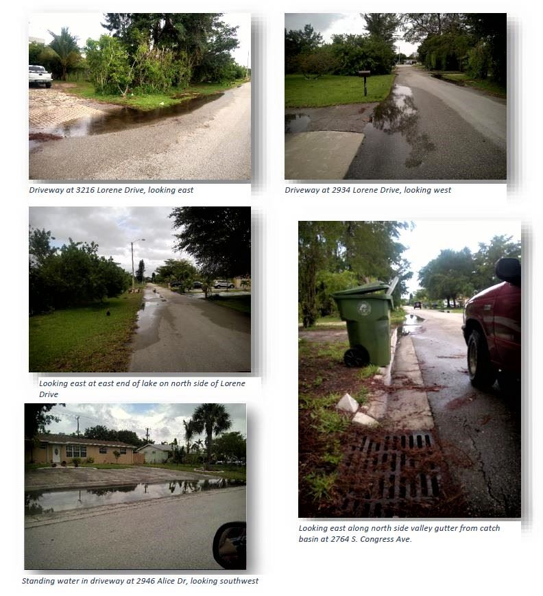 Lorene Dr. and Alice Dr. photos of standing water 3216 and 2934 Lorene Dr.,2946 Alice Dr. and near 2764 S. congress Ave. catch basin