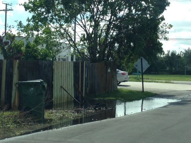 Riedel Ave. water standing in a street and swale area