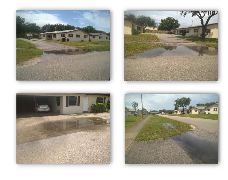 Sandra Lane multiple picture of standing water